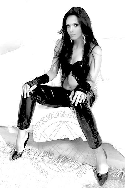 Cindy Xxl  PADOVA 3245495438